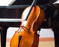 violoncelle - Dijon - Antiquitaire Neuville Franck