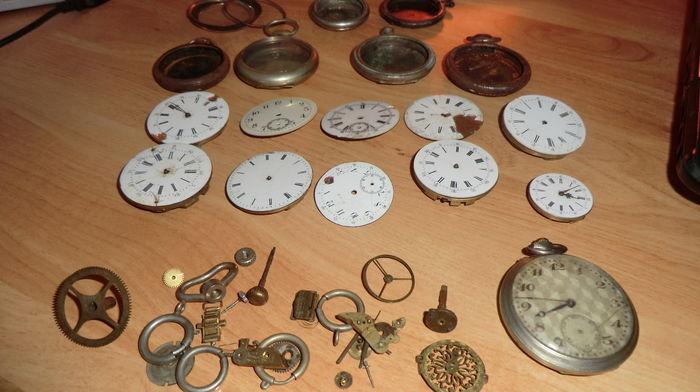 Recherche toutes montres pour collectionneurs